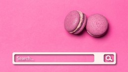 white search bar on pink background - what is seo - web design by so